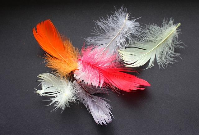 plumas-excitacion-pezones